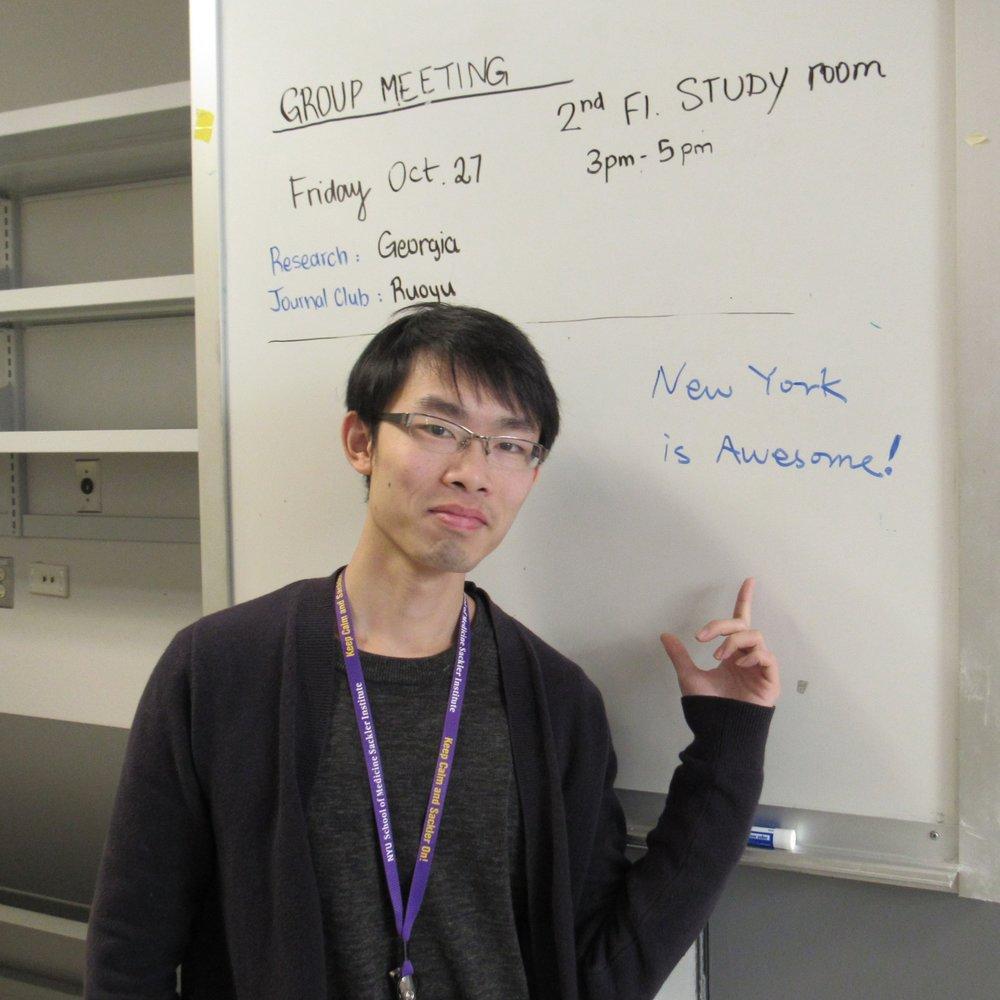 RUOYU CHEN, PhD Rotation Student