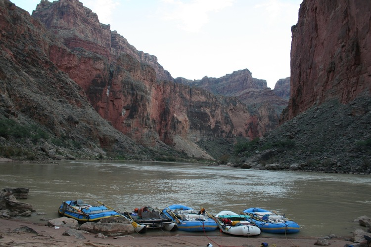 River wisdom 2.jpg