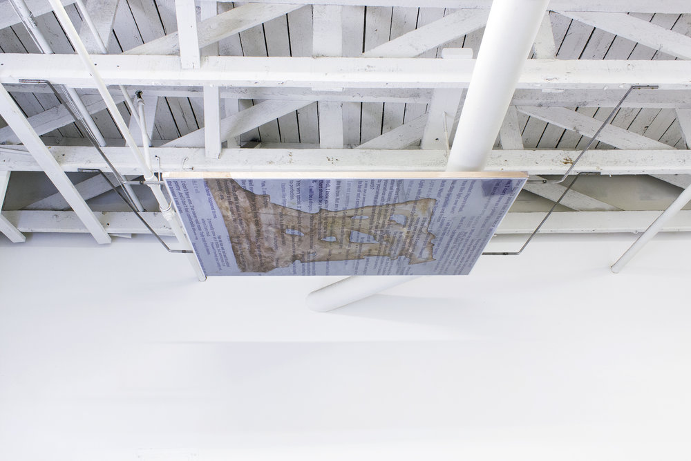 WILL SHEA INSTALLATION CEILING.jpg