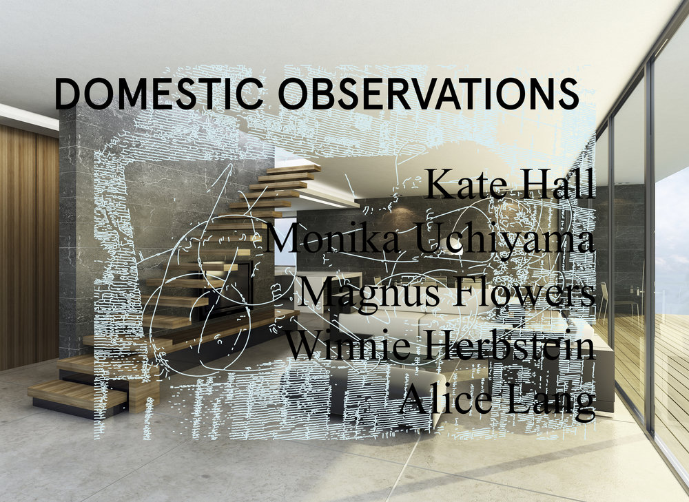 domestic observations poster .jpg