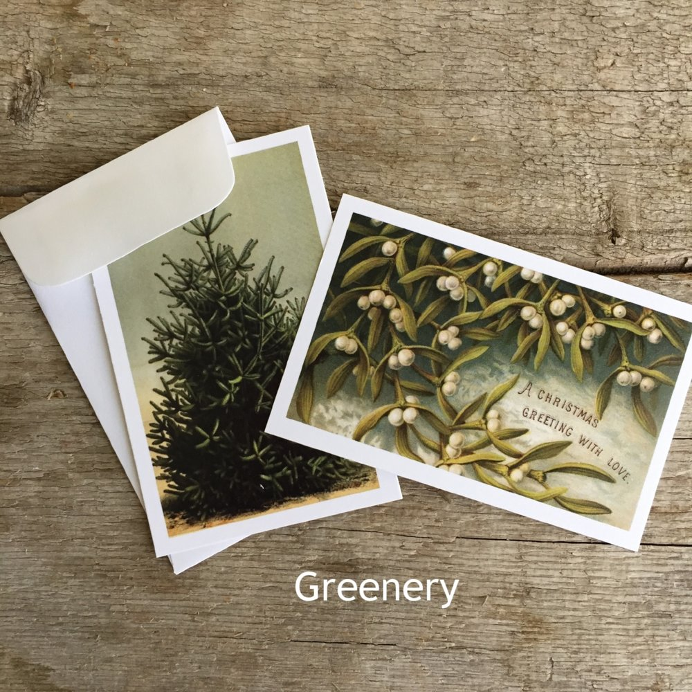 Mini Gifting Cards in Greenery from White and Fig