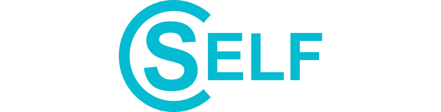 Self 2017 Conference