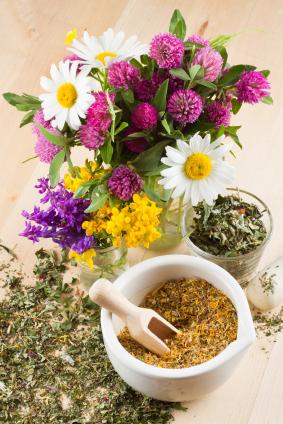 iStock_000020627140XSmall - Herbal Medicine - a.jpg