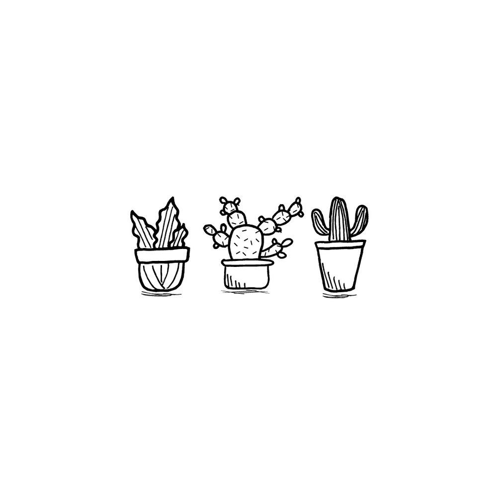 0019.-plants.jpg