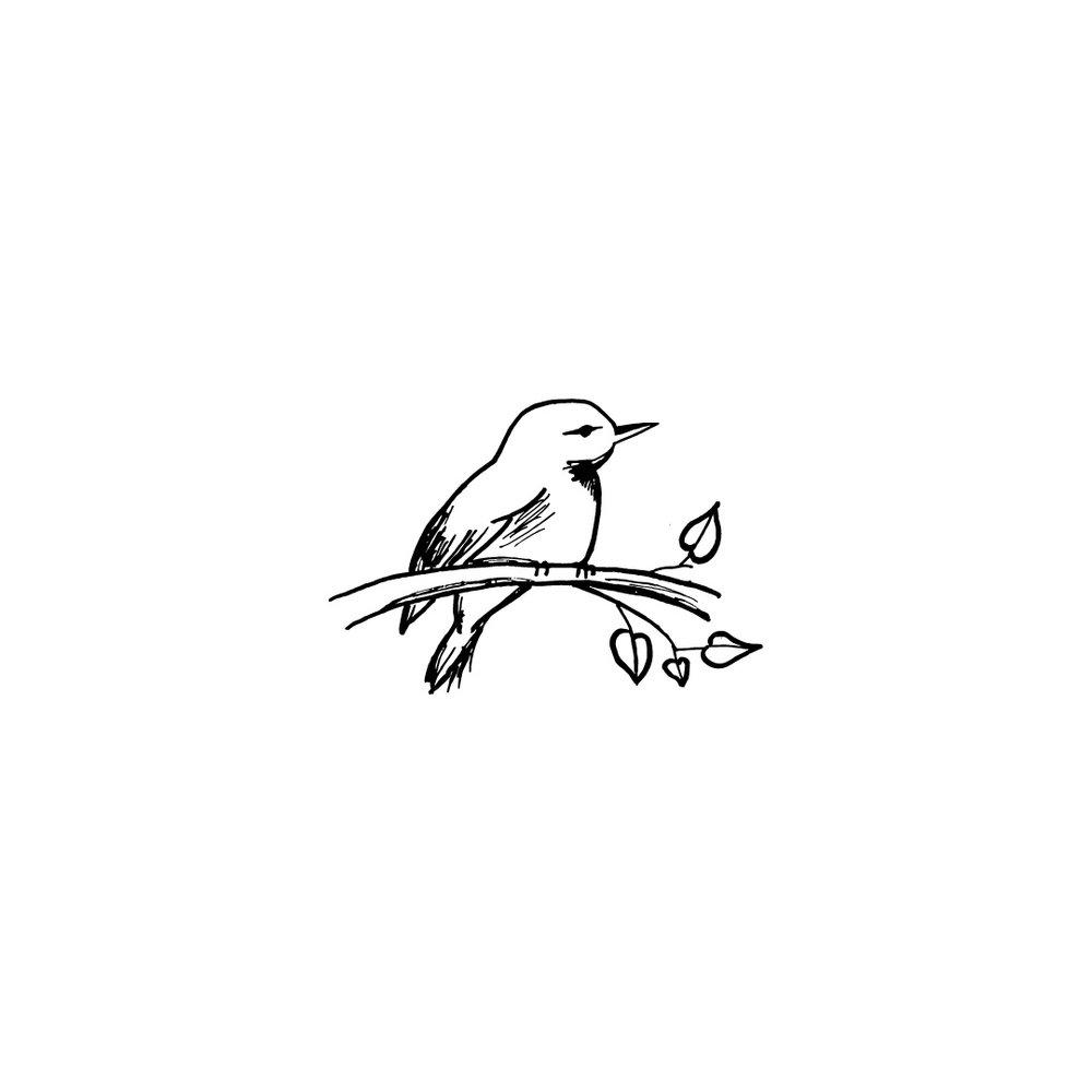 0024.-bird.jpg