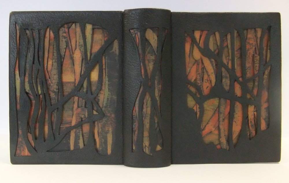 Design Bindings The Mysterious Death of Tom Thomson.JPG