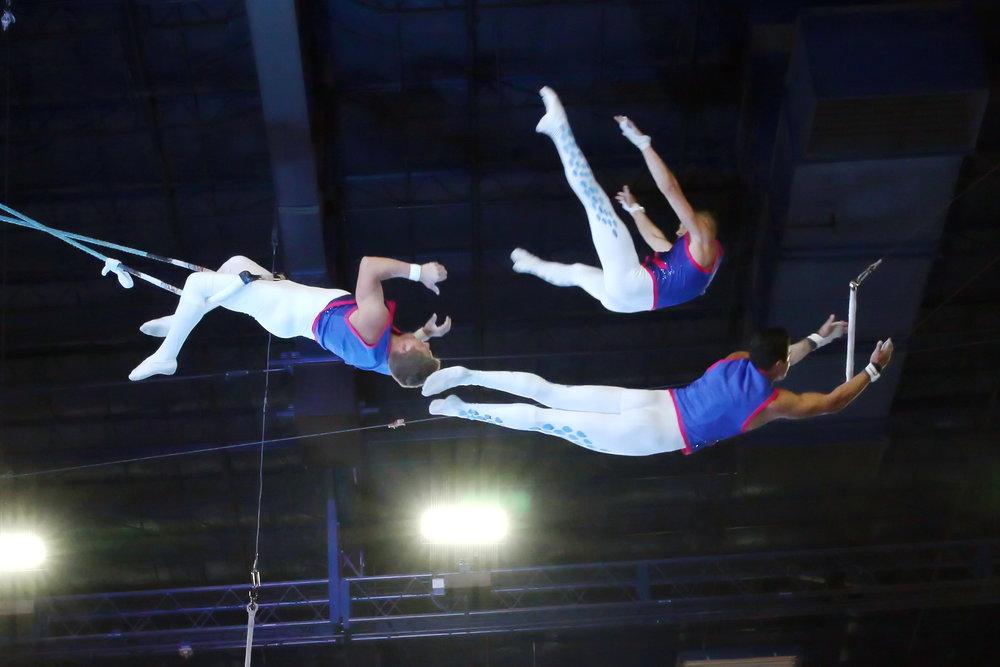 trapeze 3.JPG