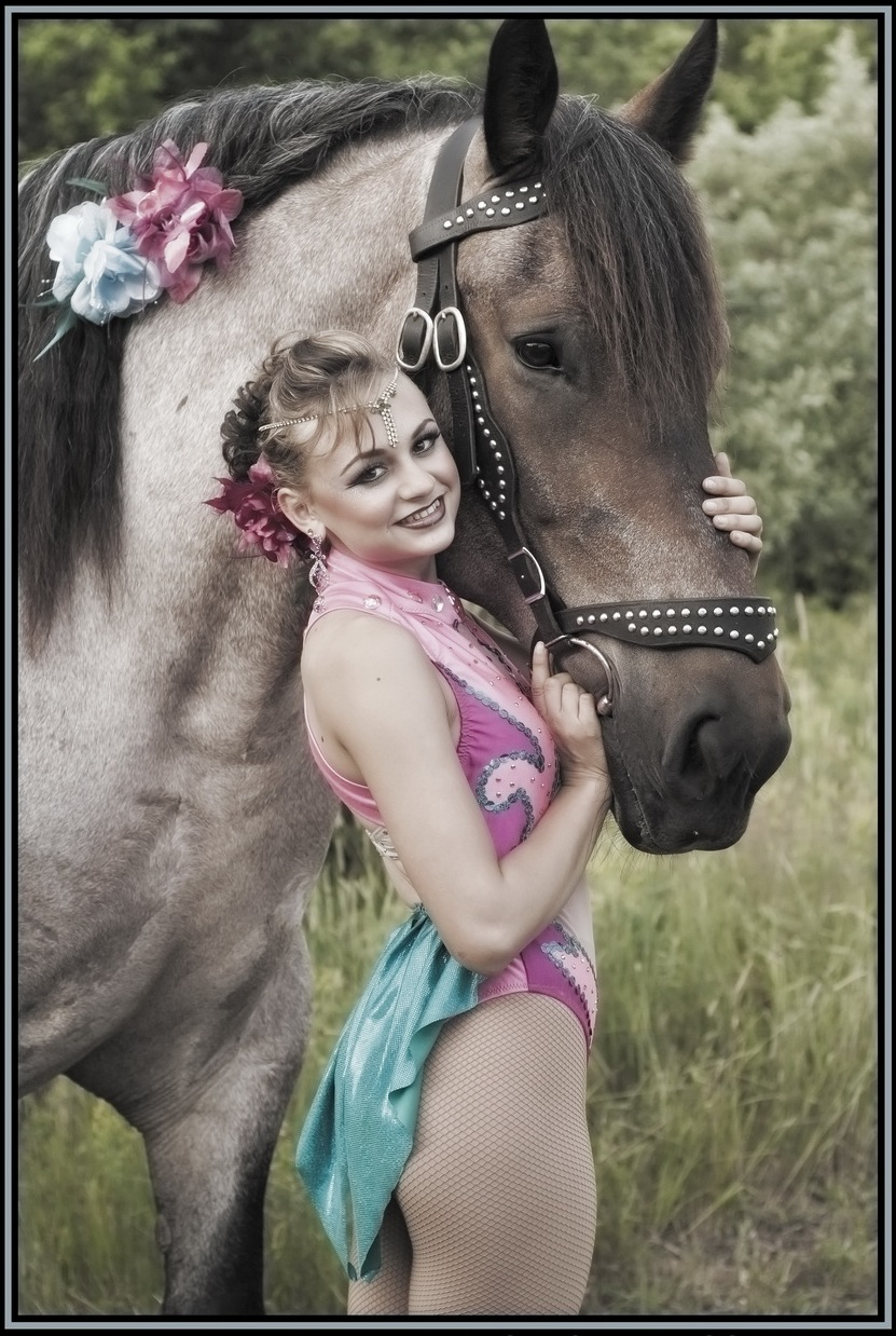 horse,4.jpg