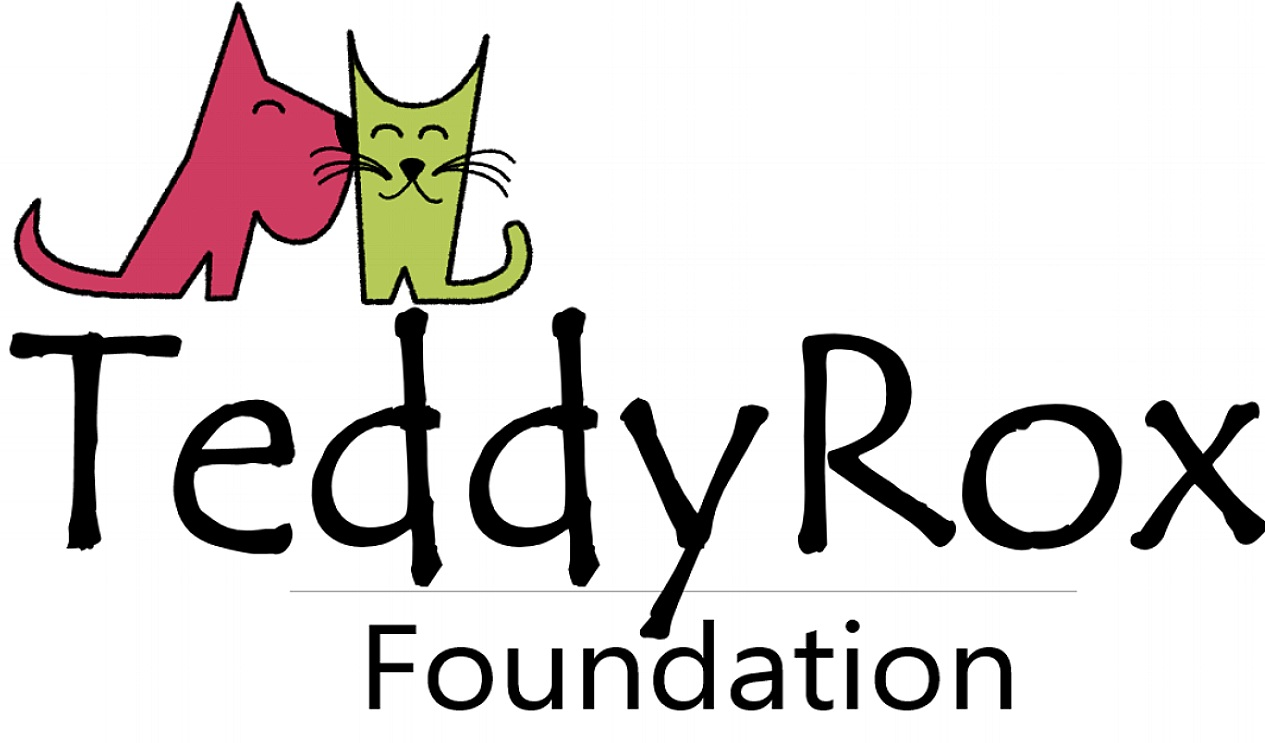 TeddyRox Foundation