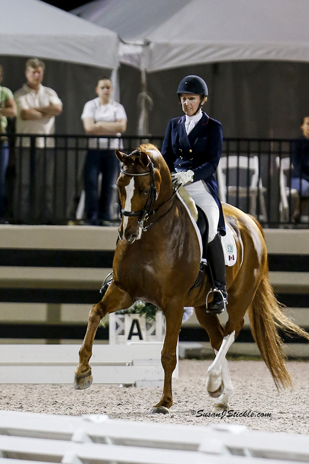 Diane Creech and Devon L in the Grand Prix Freestyle at the Adequan Global Dressage Festival 1 CDI-W , sponsored by MTICA Farm and Everglades Dressage. Photo by Susan Stickle.