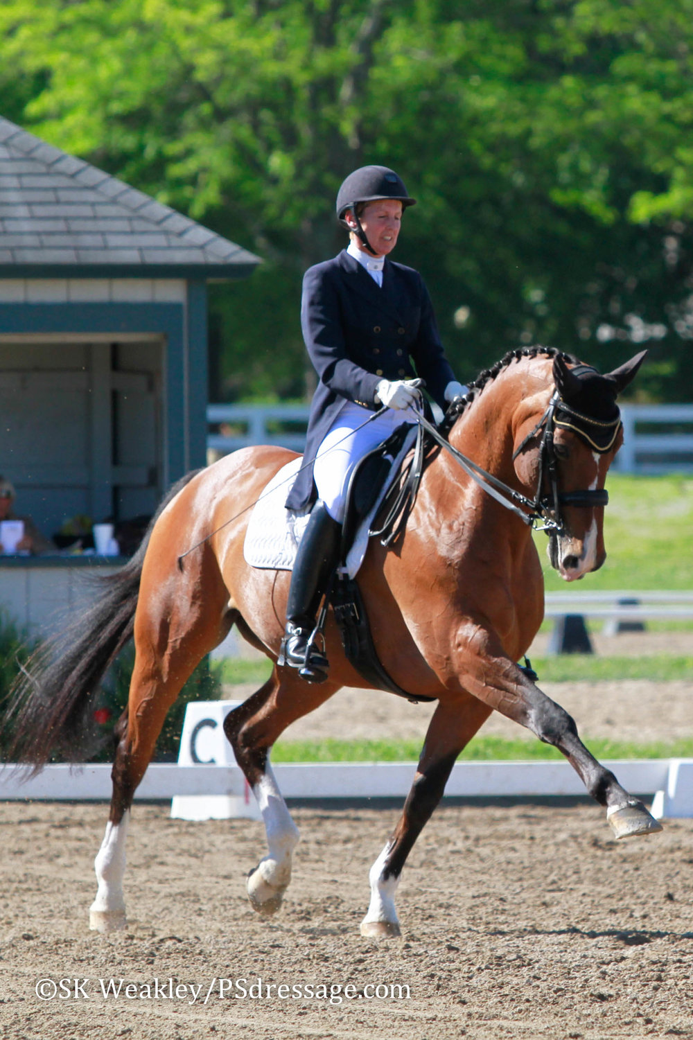 Diane Creech and Chrevis Christo at the Kentucky Dressage Association Spring Warm-Up and 28th Annual Show. Photo by Sue Weakley.