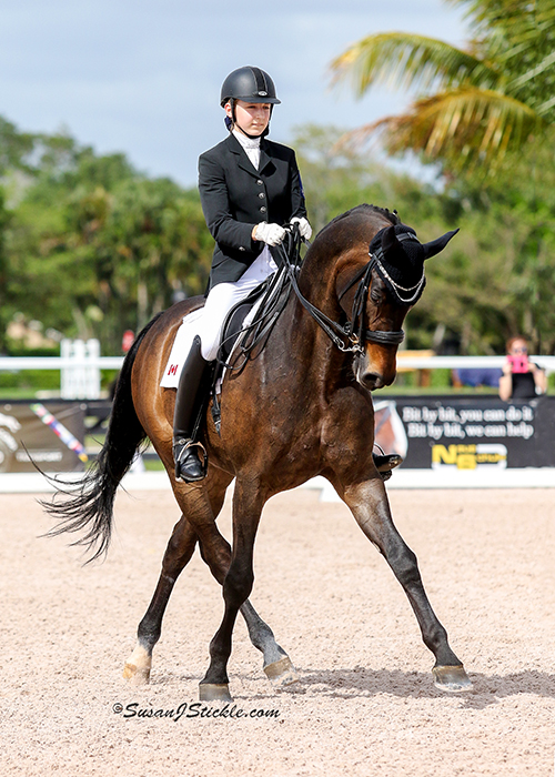 Vanessa Creech and Rob Roy at the 2015 Adequan Global Dressage Festival. Photo by Susan Stickle.