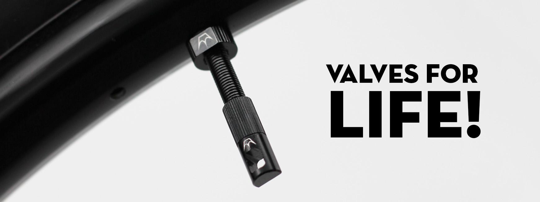 Valves Banner.jpg