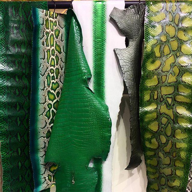 Tannery in Milan #lineapelle  #green #python #snakeskin #alligator #thedesignguy #7thandspring #interiordesign #photography #atl #mysuperfilteredlife #praylovehustle  #leather #alligator #python