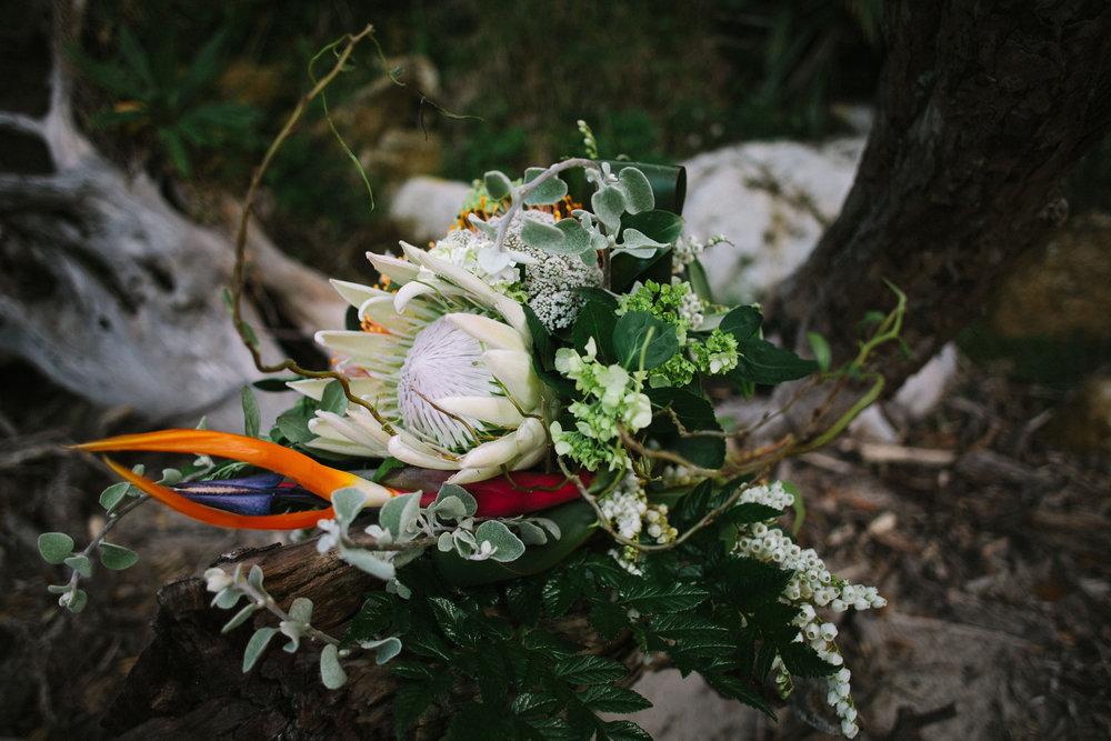 Coromandel Wedding  (8 of 65)-Edit.jpg