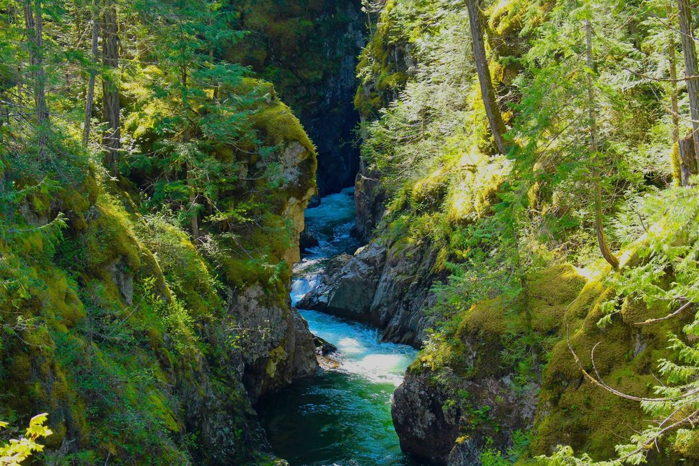 Little Qualicum Falls, Mount Arrowsmith UNESCO Biosphere Region
