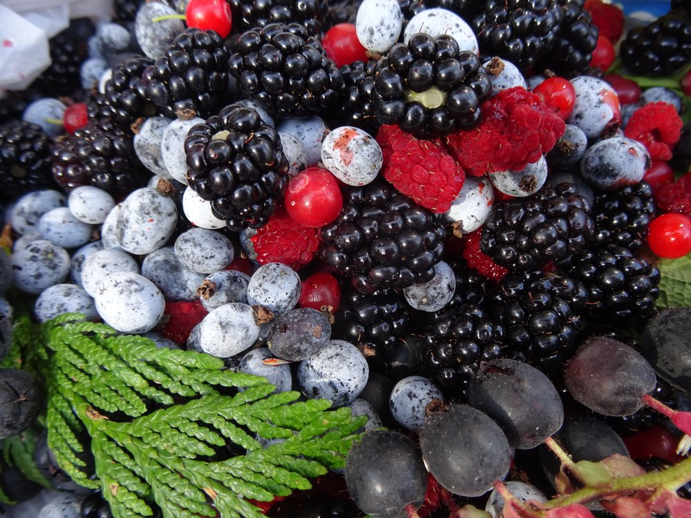 Mixed Berries from Klemtu