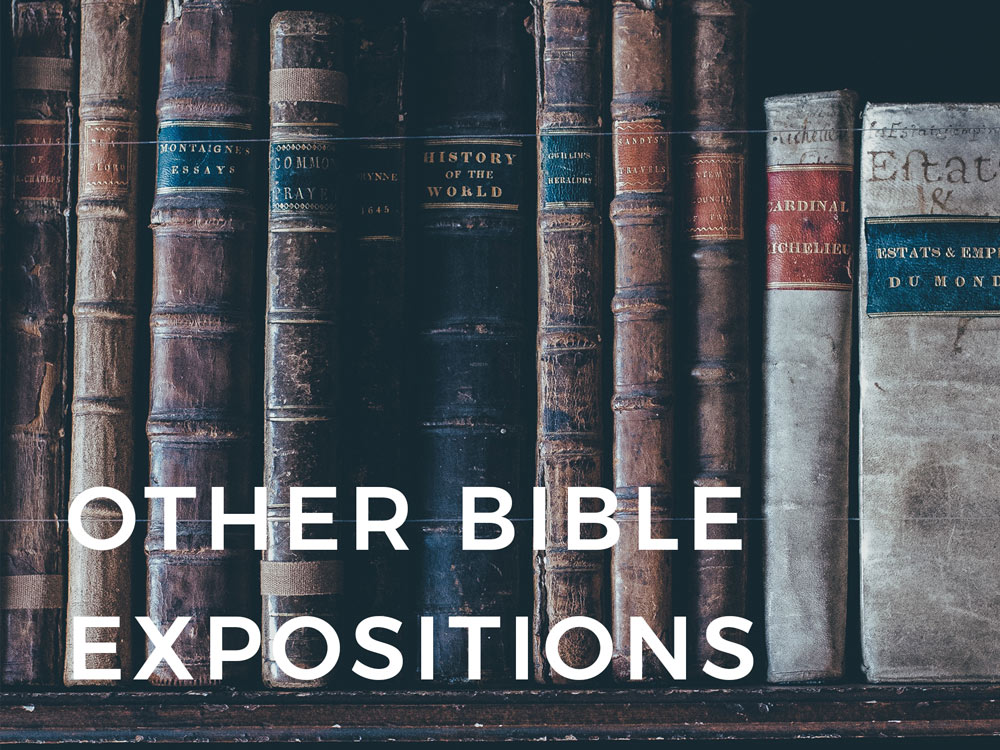 2.Other-Bible-expositions.jpg