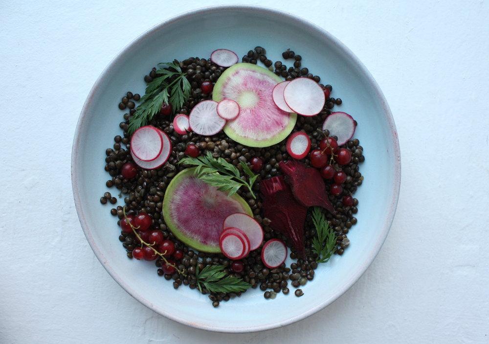 pixel-forest-lentil-radish-salad