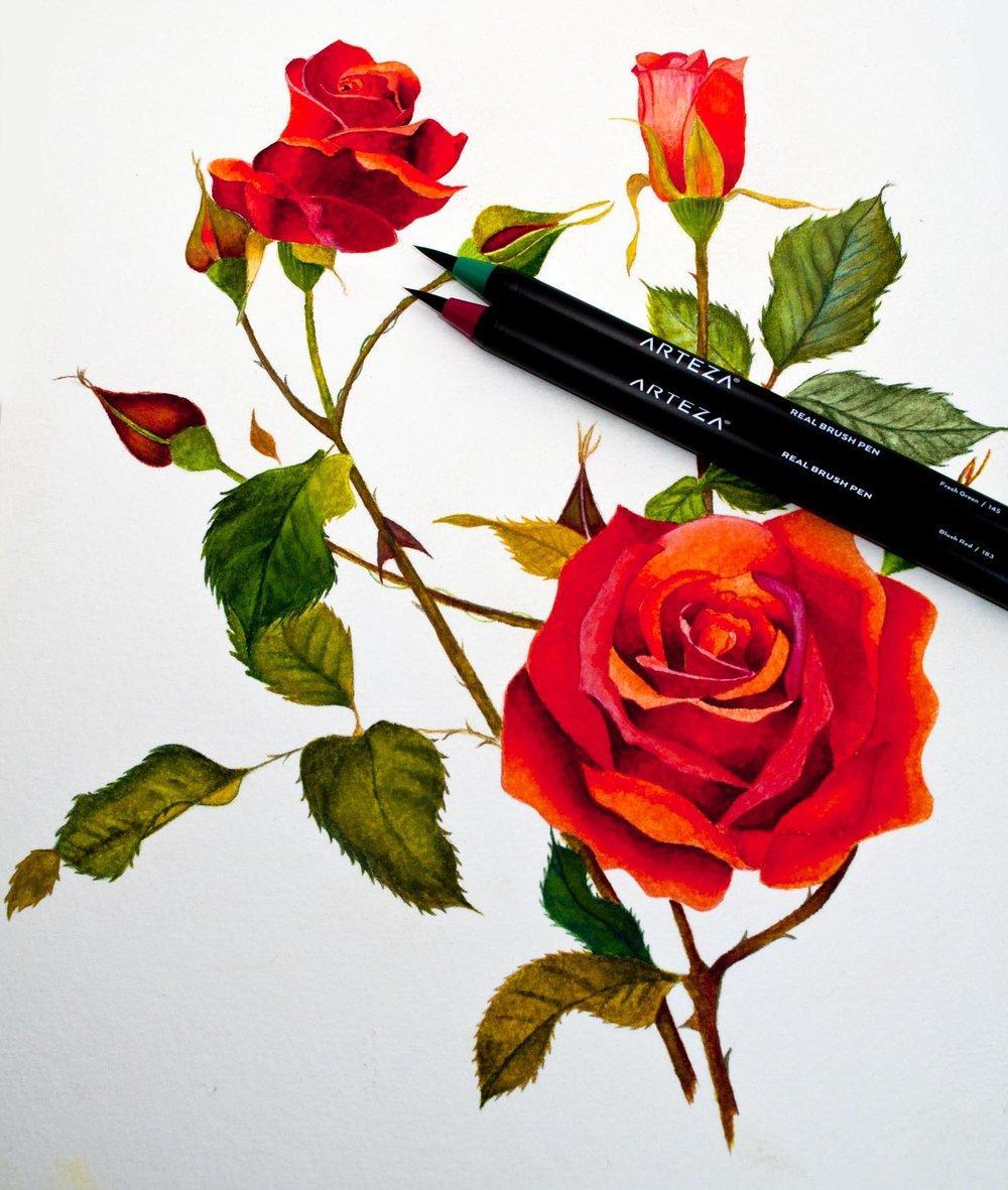 Final Image With Arteza Pens.jpg
