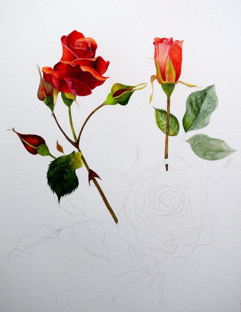 Arteza Flower 2.jpg