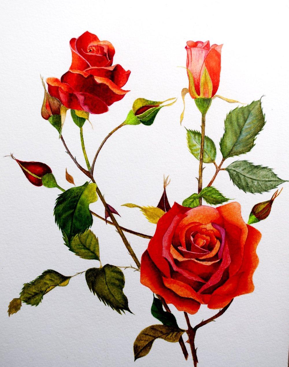 Arteza Flower 7.jpg