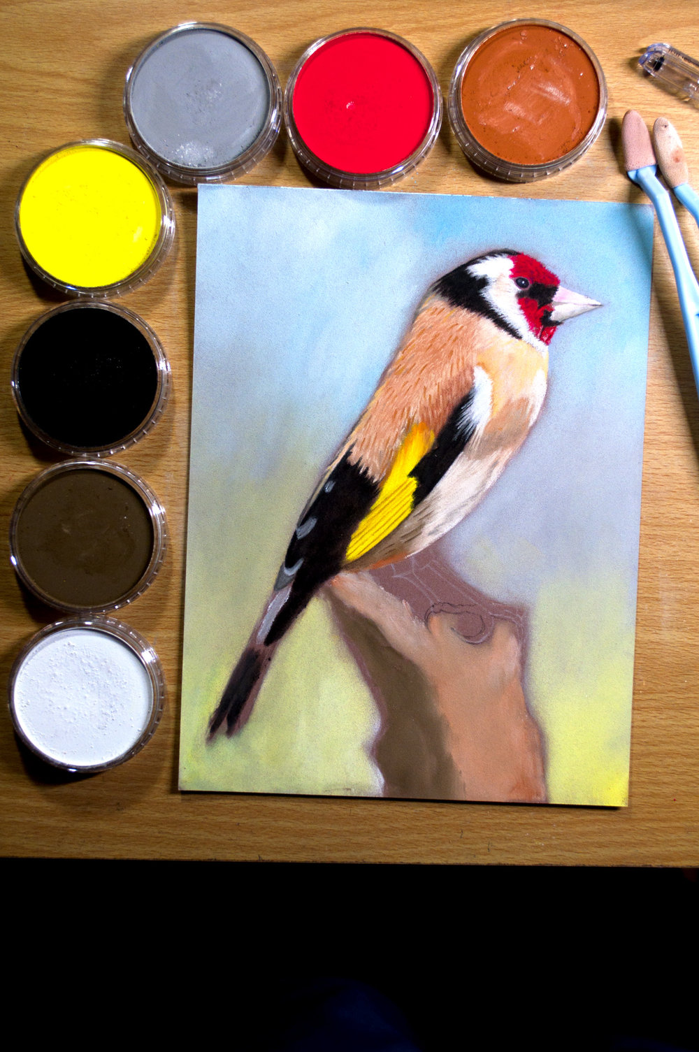 Bird Pan Pastel.jpg