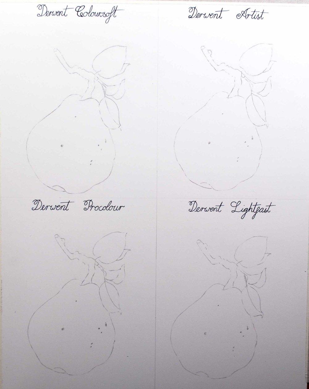 4 Botanical Images.jpg