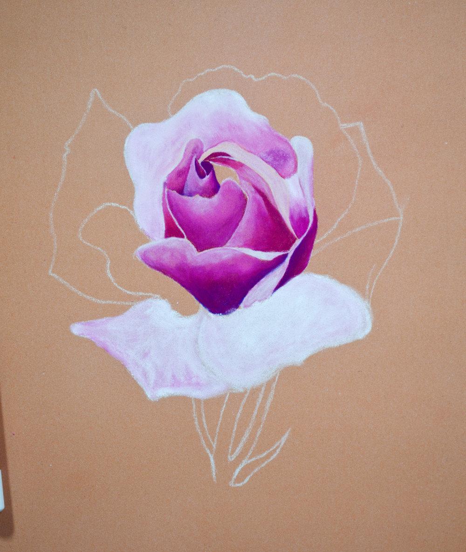 kohinoor pastel flower image 4.jpg