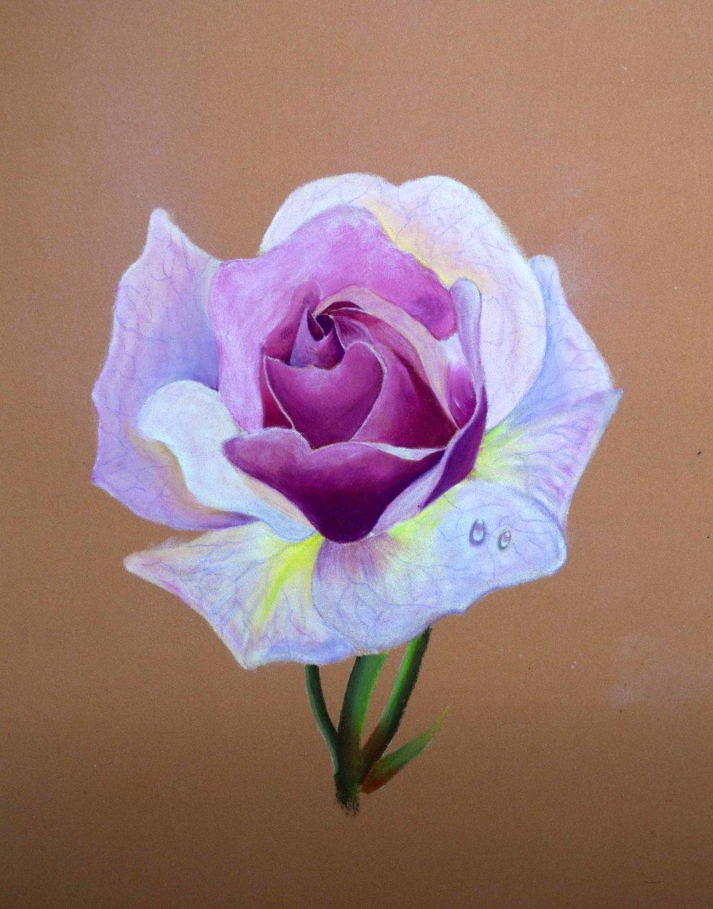 Final Kohinoor Flower Image.jpg