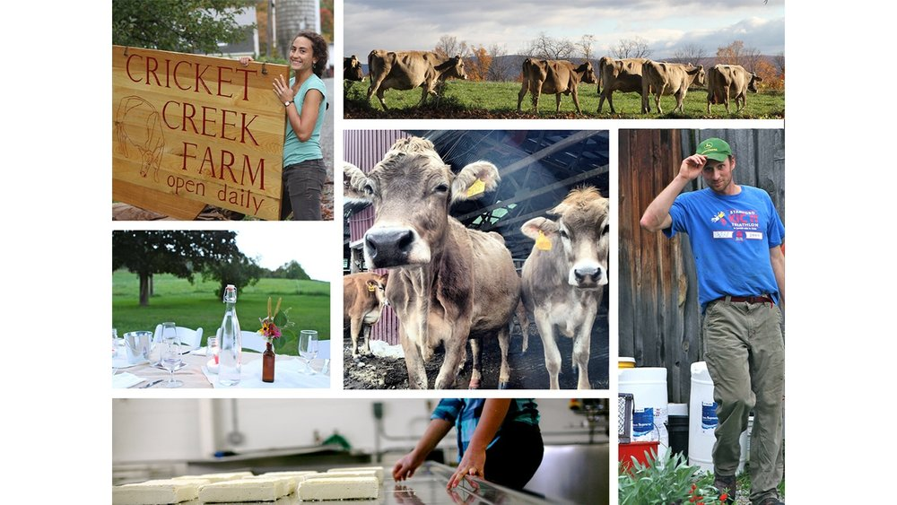 CRICKET CREEK FARM  This northern Berkshire farm is located in Williamstown Ma, producing artisan cheeses, milks and meats.  Address: 1255 Oblong Rd, Williamstown, MA 01267  Phone: (413) 458-5888