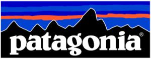 patagonia-300x118.png