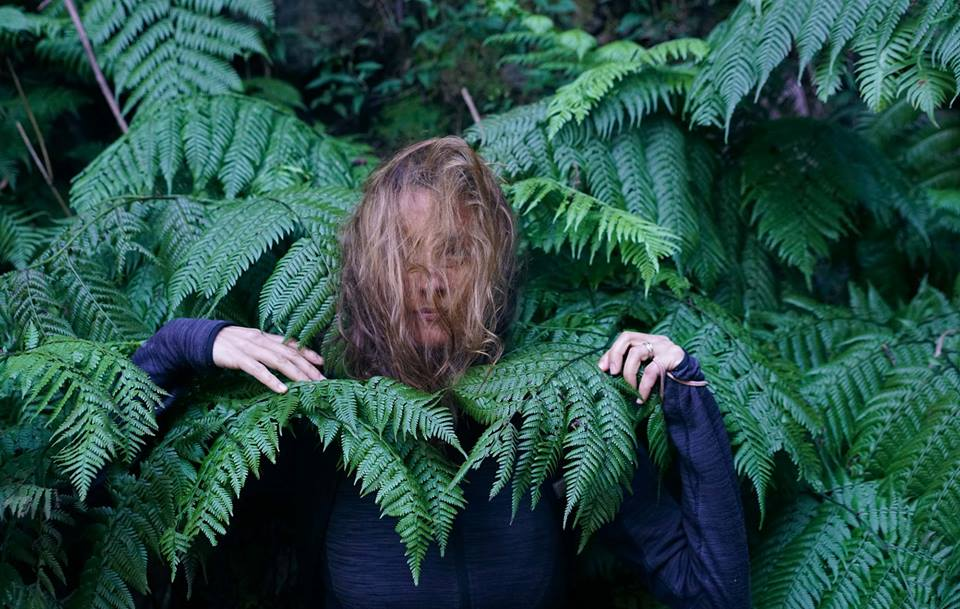 k in ferns.jpg