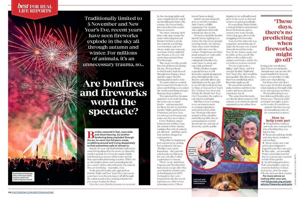 FireworksReportBest.JPG
