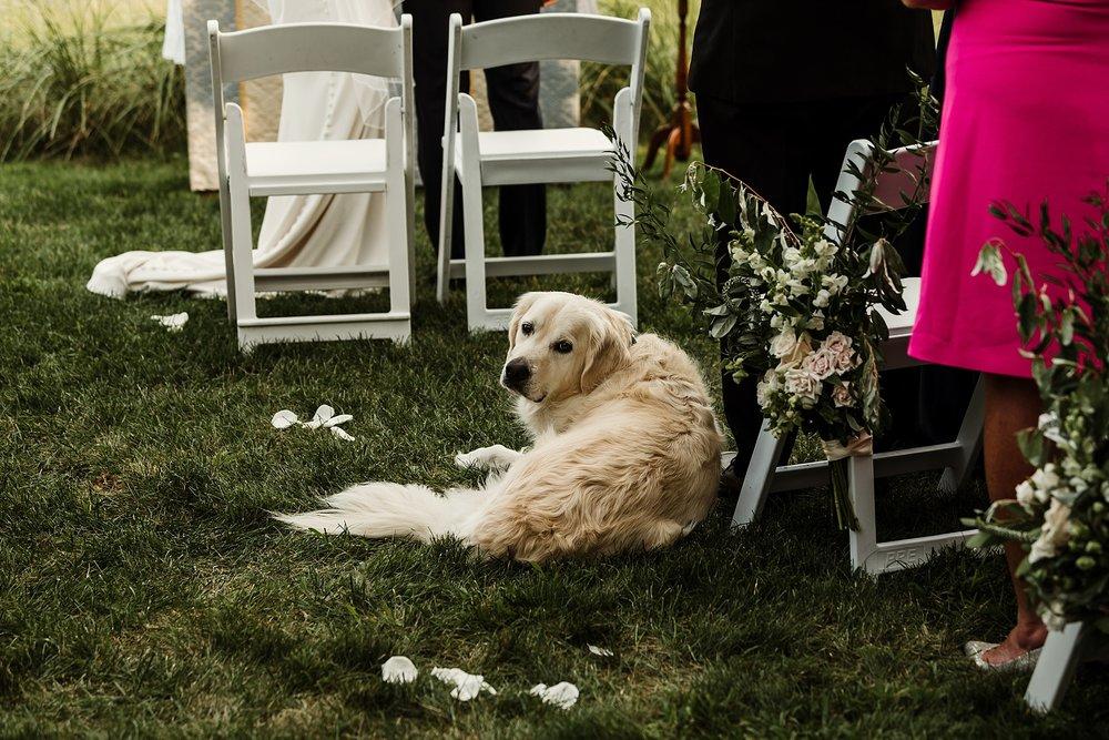 hudson_valley_wedding_1837.jpg