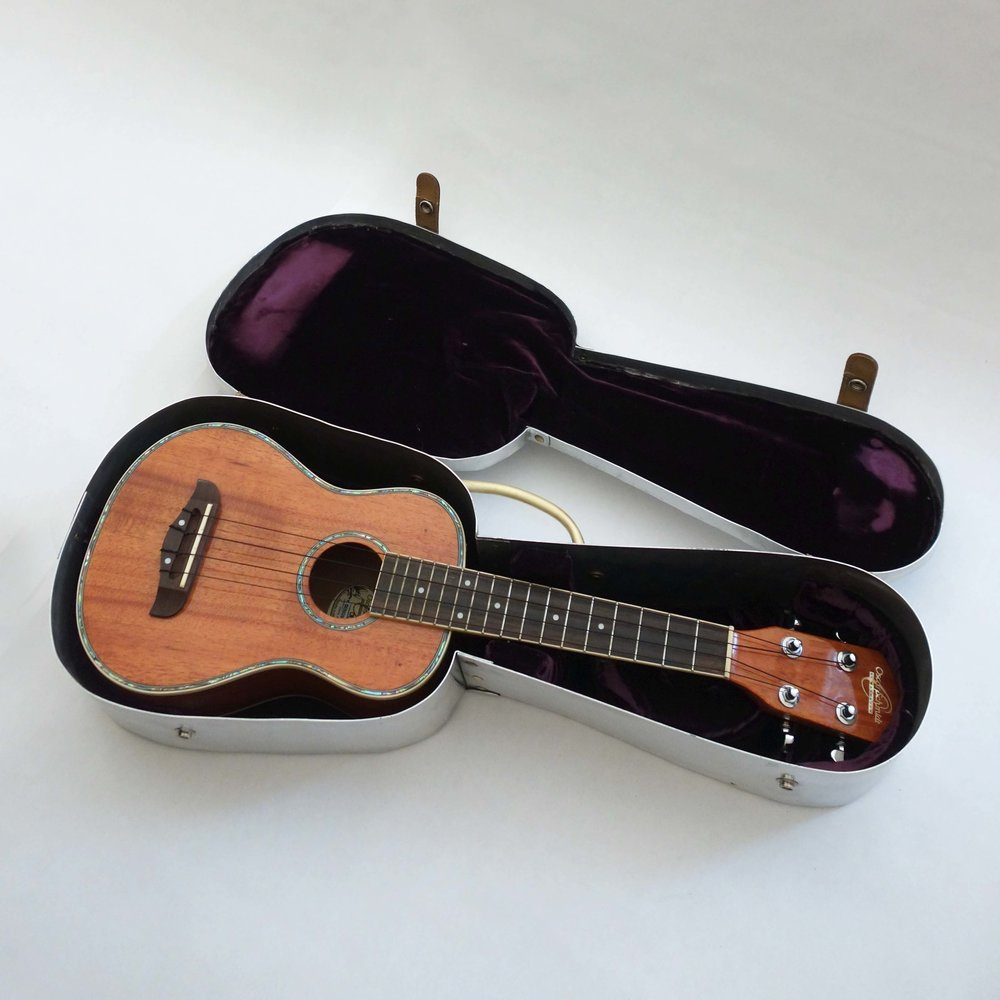 ukulele case (aluminum, brass, leather belt, velvet)
