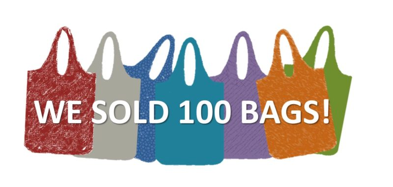 100-Bags-1-e1469331921465.jpg
