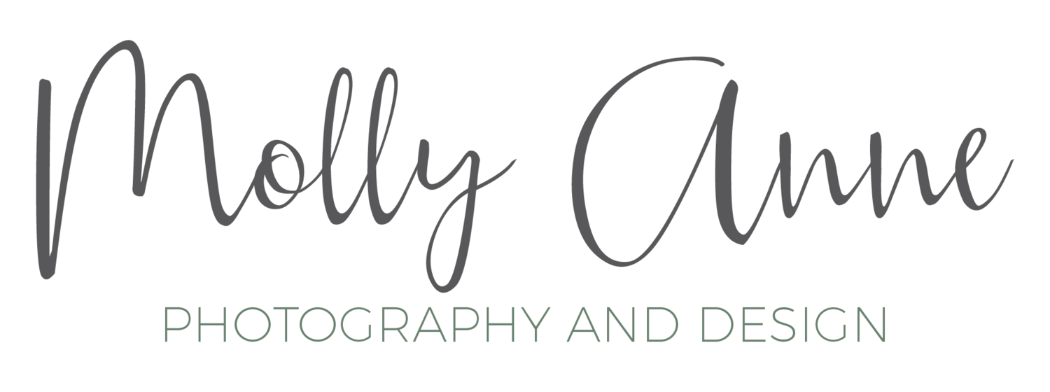 molly anne photography and design