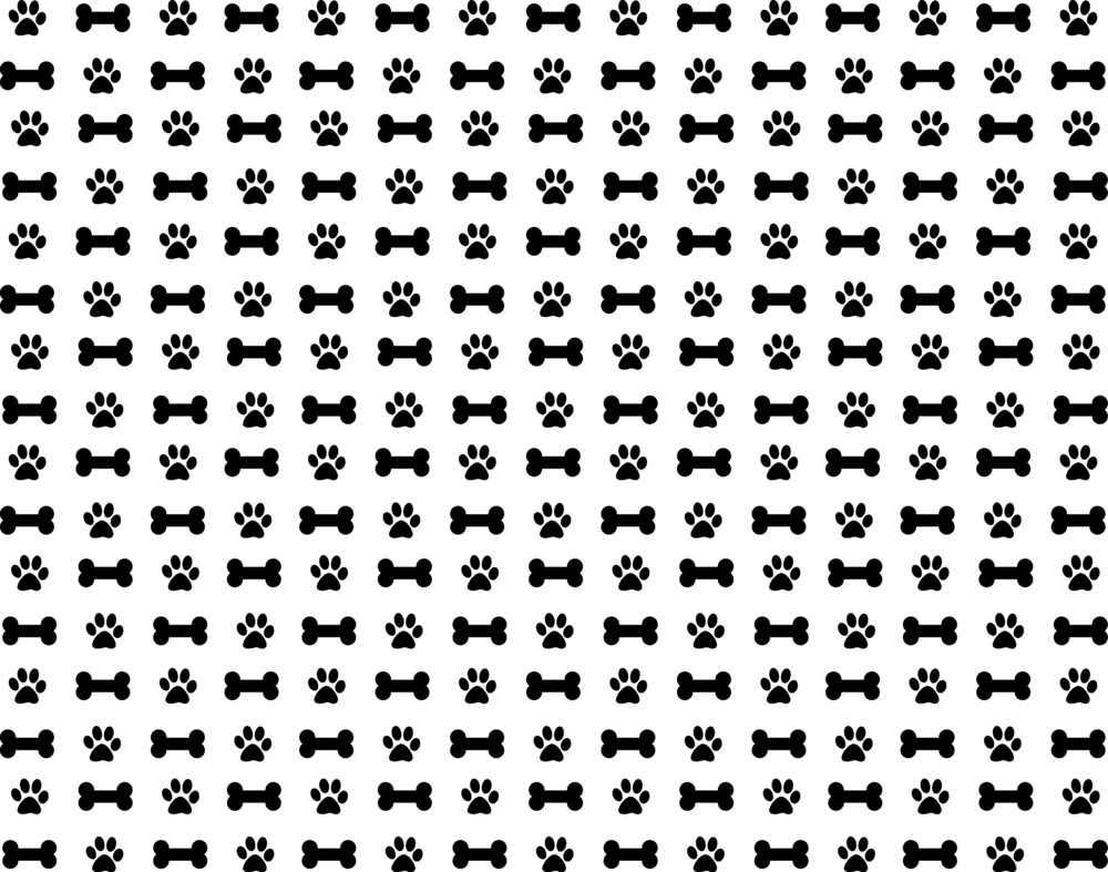 PrimePet_Pattern.png
