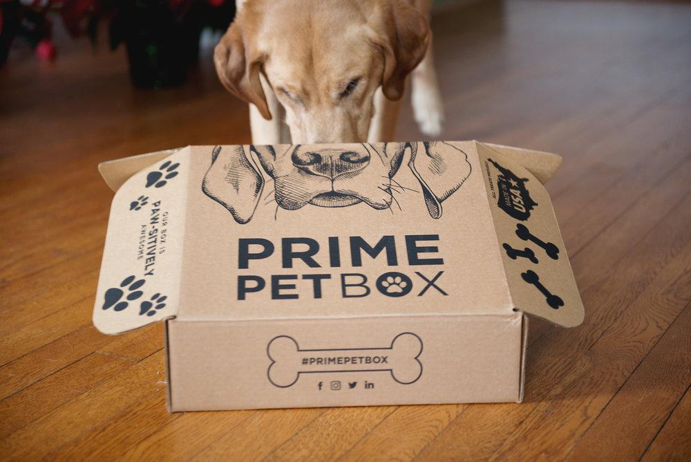 prime petbox-6.jpg
