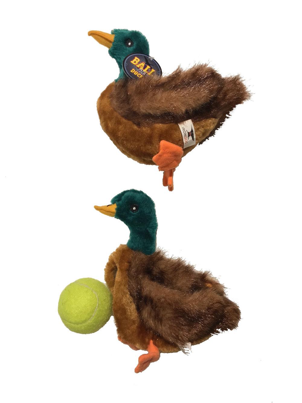 duck cut open.jpg
