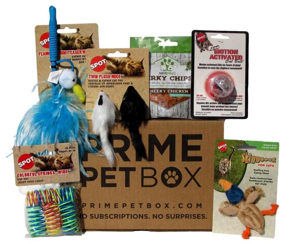 PPB Cat Box Cheeky Chicken_clipped_rev_2.jpeg