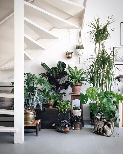 Sundling Studio - Get Your Green On - 3.jpg