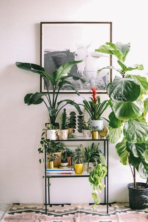 Sundling Studio - Get Your Green On - 7.jpg