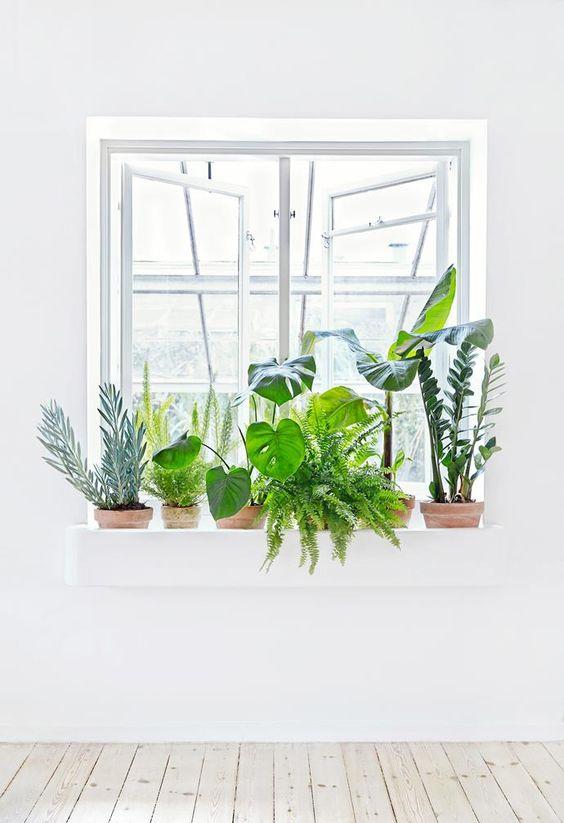 Sundling Studio - Get Your Green On - 10.jpg