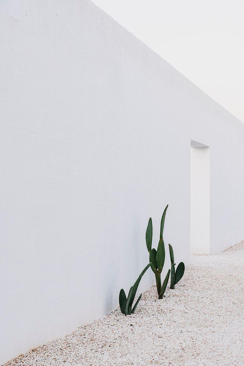 Sundling Studio - Masseria Moroseta - 13.jpg