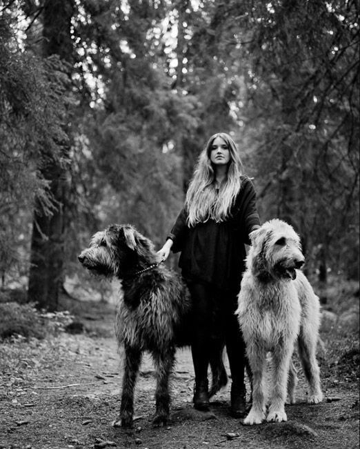 Sundling Studio - Pins of the Week - Wolfhounds.jpg