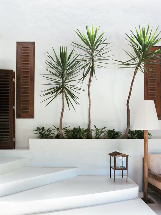 Sundling Studio_All About_Tropical Vibes_Trees.jpg