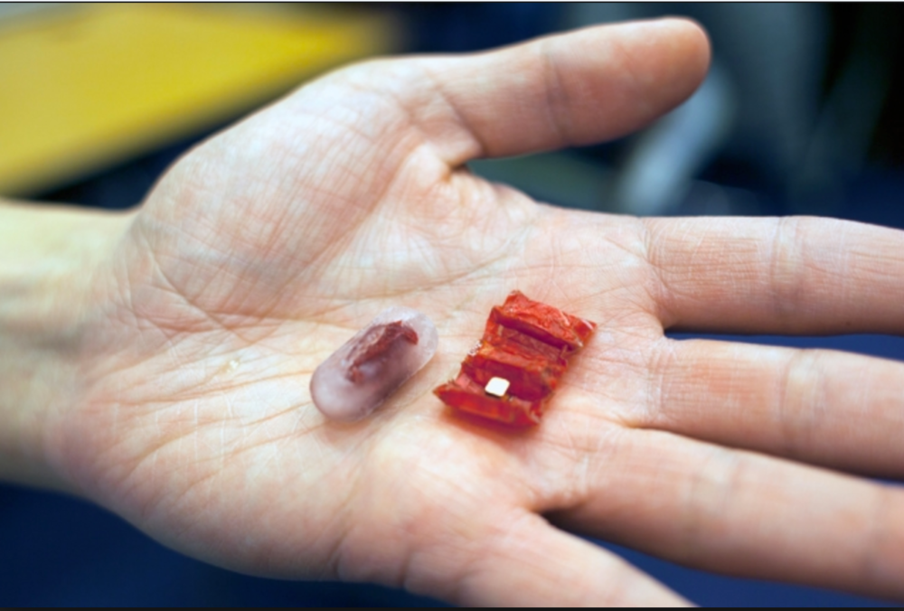 MIT's newly designed capsule (left) and unfolded origami device (right)