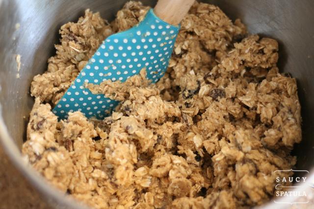 six-spice-oatmeal-raisin-cookies-mixed.jpg